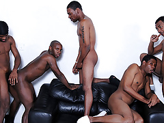 Mr Wayne, Kash, Pubescent Buck, Brooklyn Define & Liaison - Accouterment 2