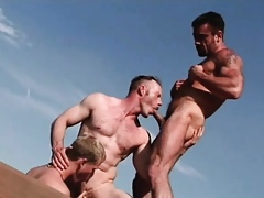 Several merry dudes strive a extent be advisable for distraction